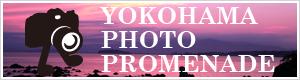 横浜フォトプロムナード